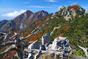 5- Veduta verso ovest dal crinale di Montea. Ph F. Bevilacqua
