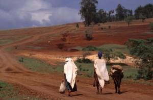 Non ha fine la tragedia in atto nel Corno d'Africa: 12 milioni di esseri umani in preda alla fame tra Somalia, Etiopia, Gibuti, Kenya