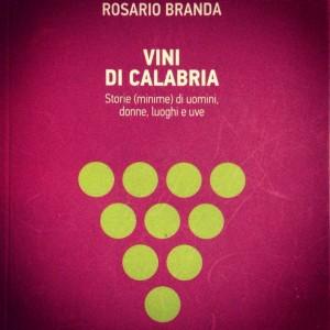 La copertina del libro edito da Rubbettino.