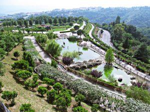 calabria-parco-della-biodiversita3