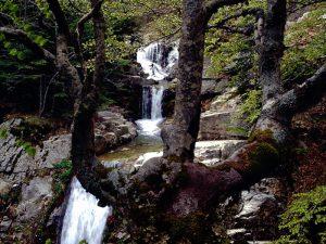 """La cascata detta """"del passo del cervo"""" nel Parco nazionale dell'Aspromonte."""